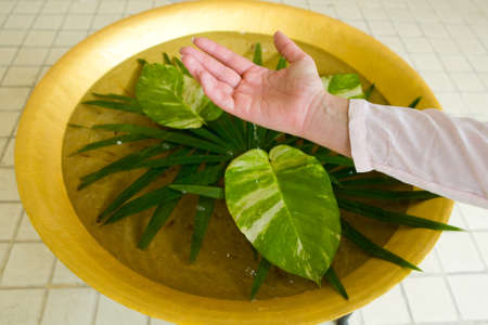 Drops of water drip from a woman's hand into a basin with exotic leaves. Thailand. 免版税图像