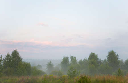 The nature of central Russia in the evening fog. Calm landscape.
