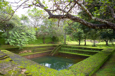 An ancient structure similar to a pool is filled with water. Polonnaruwa in Sri Lanka.