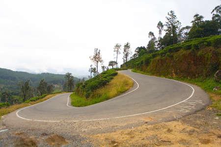 A sharp turn of an asphalt mountain road near tea plantations. The nature of Sri Lanka.