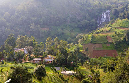 Top view of a small rural settlement and tea plantations. Sri Lanka.