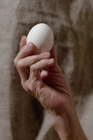 Senile hand holds a white chicken egg. Close-up.