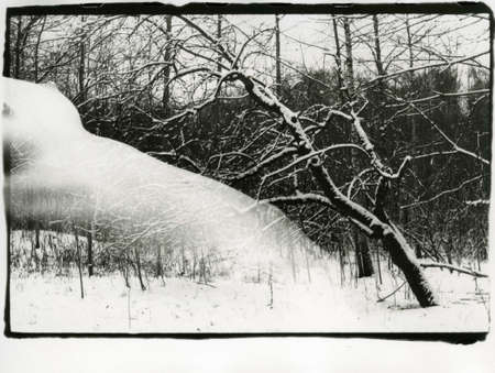 Naked slender girl and winter nature in one frame. Attention! Image contains grit and other artifacts of analog photography! 免版税图像 - 148137257