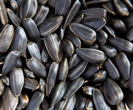 Many unpeeled sunflower seeds lie in the heap. Food. Reklamní fotografie