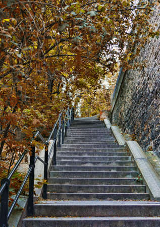 Stone ladder in park in an environment of autumn trees
