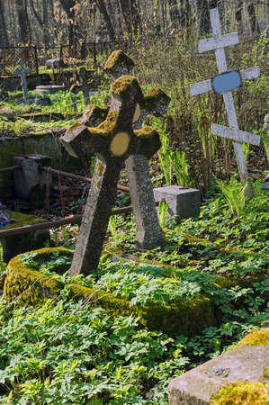 The old thrown graves under the spring sun