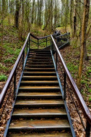 Stairway in the forest in early spring