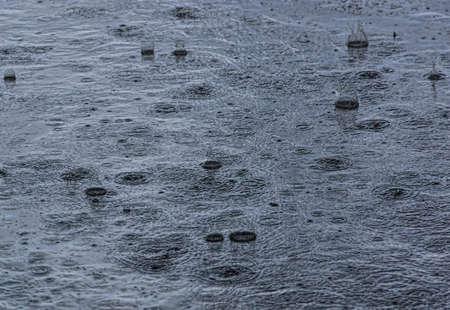 Drops of a summer rain on asphalt Stok Fotoğraf