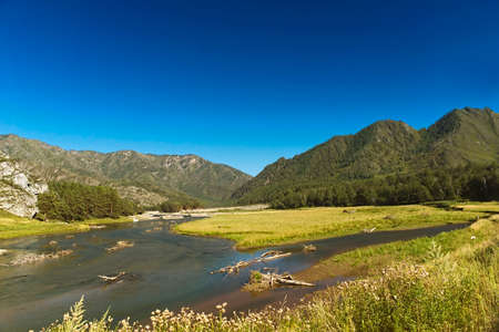 Mountain river in the bright summer afternoon Stok Fotoğraf
