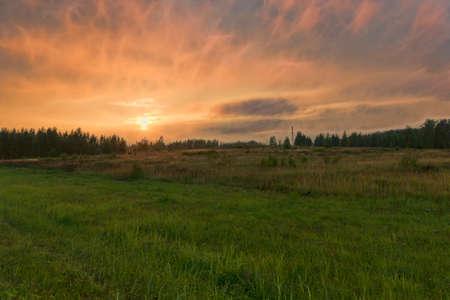 Summer decline in the field Stok Fotoğraf