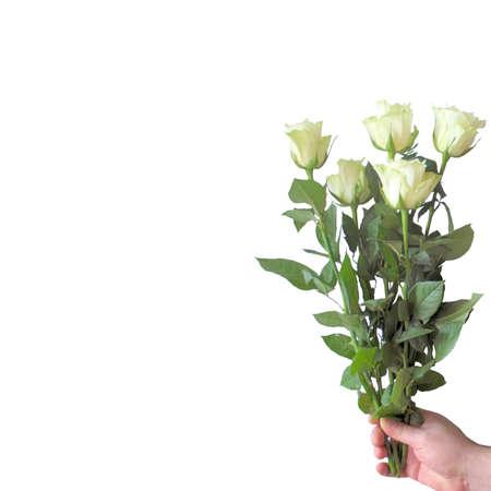 grew: Bardovaya, Grew, Red, Buds, Rosa,  Red roses, Buket, Valentina, Debutante, Map. Stock Photo