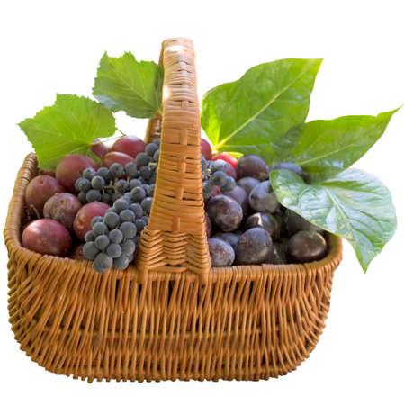 Grapes, Plum, Fruit, Crude, Basket, Ripe, Sweet, Product, Fruit, Food. photo