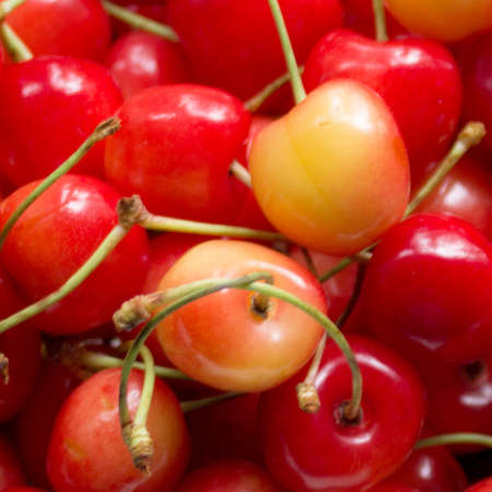 Cherry, Fruit, Background, Fruit of berry, Red, Food, Cute, Organic, Summer. Фото со стока