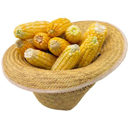 corncob: Grain, white, hat, corncob, summer, cob, closeup, isolated, produce, nobody, natural.