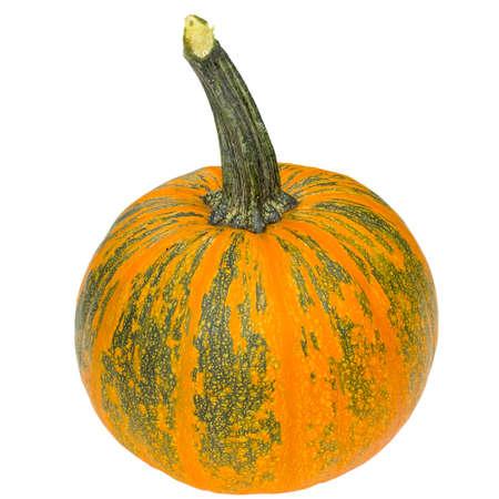Fresh orange pumpkin isolated on white background. Stock Photo