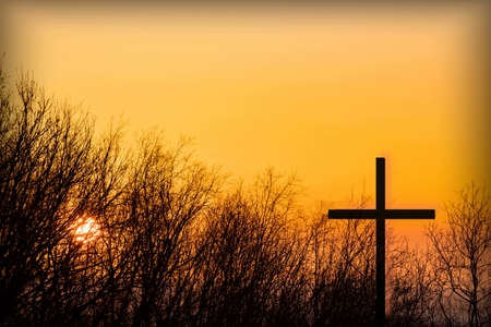 Cross in the sunset of the sun and the silhouette of tree branches