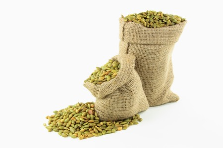 Still picture of burlap bags full with Pumpkin seeds and spilled seeds over white background. Stock Photo - 7537444