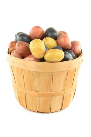 Still picture of different colour mini potatoes, yellow, red and dark blue in wooden basket bushel over white background.  Stock Photo
