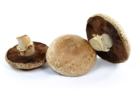 Still life picture of group of three organic mushrooms Portobello top side and bottom sides spores, caps and stalks over white background.  Stock Photo