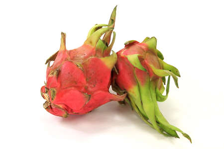 cactus species: Dragon Fruit con frutos c�scara de la piel de varias especies de cactus m�s de fondo blanco