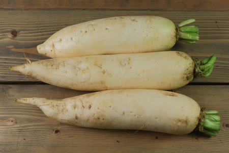 White roots with low food energy of Lo Bok known as well as Daikon, Winter Radish, Oriental Radish, or Long White Radish, or Chinese white radish, or Japanese Radish, over gray wooden table