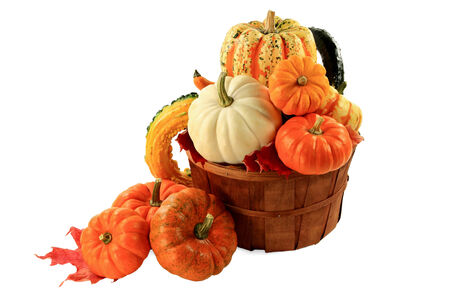 Different sorts and colours Mini Pumpkins and Squashes in wooden basket bushel and spilled out, a Fall harvest arrangement decorated with red dry leaves, over white background.