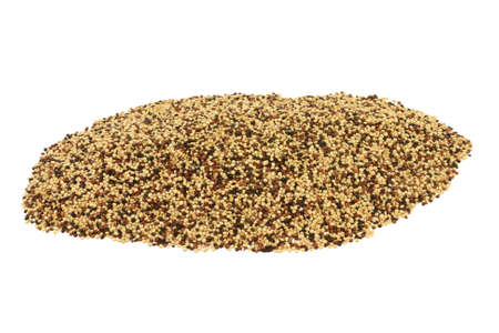 Popular as Tri color (Tri-Color, Tricolor) Organic Quinoa seeds (white, Black, Red Quinoa seeds) spilled  on pile isolated over white background