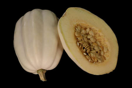 White Swan Squash outside and inside view over black background. Inside squash are seeds and light yellow flesh sweet when cooked outside is white colored shell. Later summer to middle winter Fruit Stock Photo