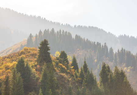Misty perspective in autumn mountains Stock Photo
