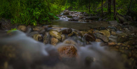 Mountain River in the wood, panorama photo