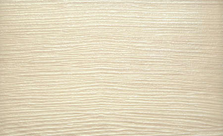 Natural bleached wood. Background. Texture Close-up