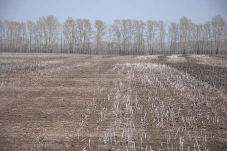 Freshly plowed field with the remnants of winter crops.
