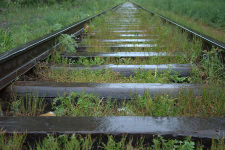 Abandoned, old railway line covered with grass, going through the forest after the rain.