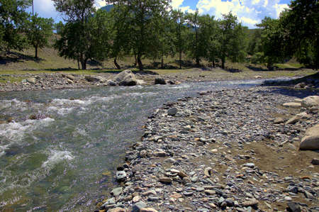 The bend of a shallow and crystal clear mountain river. Altai, Siberia, Russia. Stock fotó