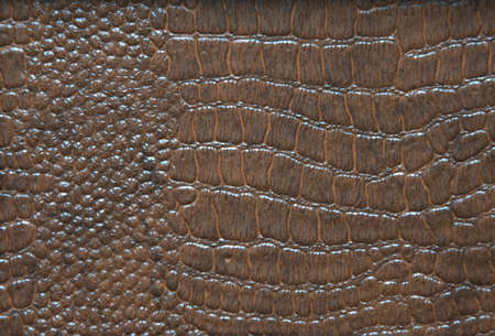 Genuine leather with a natural reptile pattern in dark brown. Close-up. Standard-Bild