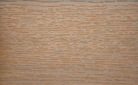 Dark oak texture of natural wood on a slice closeup. Background.