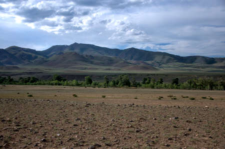 Desert landscape of highland steppe with sparse shrubs on the background of mountain ranges. Chagan-Uzun, Altai, Siberia, Russia.