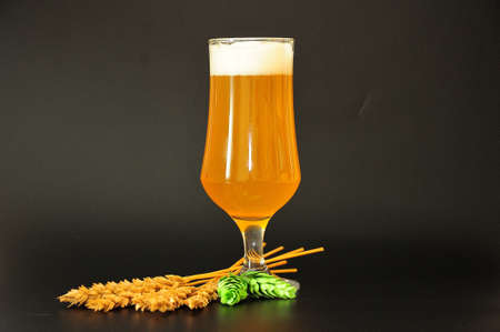 Tall glass goblet with wheat beer, hops and ears of cereals on a black background. Close-up.