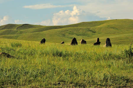 Ancient burial stones stand in the center of the hilly steppe on a sunny summer day. Safronovskie kurgans, Khakassia, Siberia, Russia. Standard-Bild