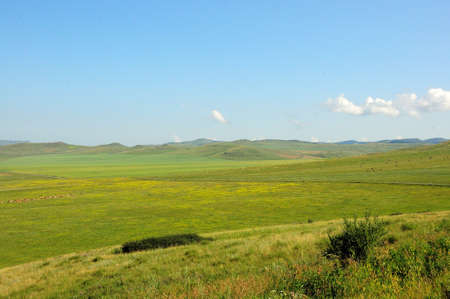 A large hilly steppe with fertile pasture under a summer blue sky with white cumulus clouds. Khakassia, Siberia, Russia. Standard-Bild