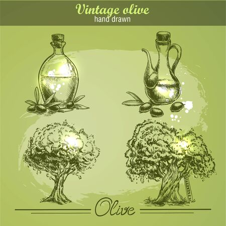 olive green: Vintage hand drawn set of olive tree and bottle. Sketch style. Watercolor grunge background.