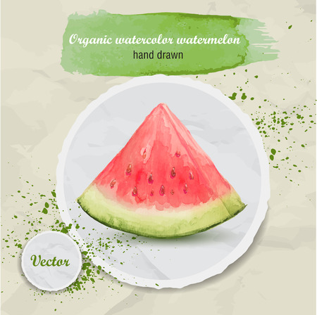 Vector watercolor hand drawn slice of watermelon on round paper piece with watercolor drops. Organic food illustration.