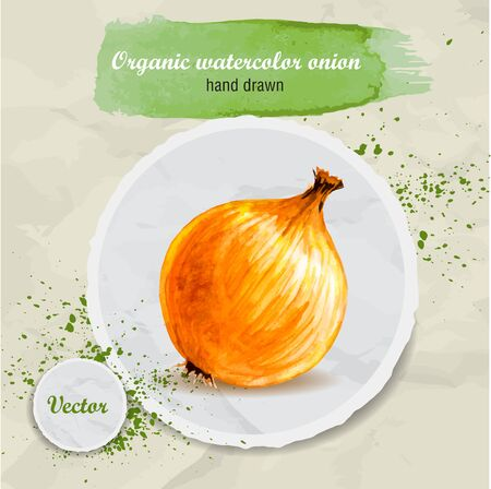 Vector watercolor hand drawn onion on round paper piece with watercolor drops. Organic food illustration.