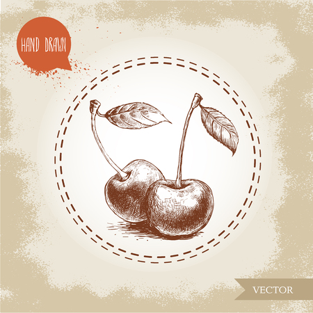 etched: Hand drawn cherries isolated on vintage background.Retro sketch style eco food illustration