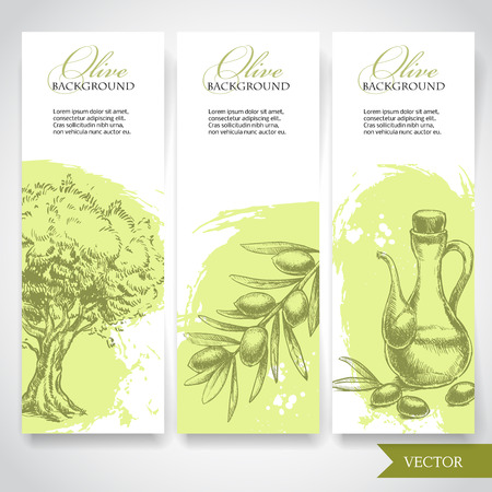 hand pencil: Set of hand drawn olive banners. Olives, olive tree and olive branch on watercolor splash background. Organic food illustration.