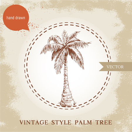 palm of hand: Hand drawn coco palm tree sketch illustration on vintage grunge background. Travel and vacation symbol. Illustration