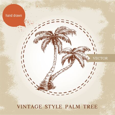 coco: Hand drawn coco palm trees sketch illustration on vintage grunge background. Travel and vacation symbol.