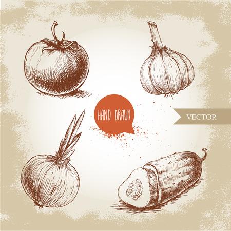 Ensemble de légumes dessinés à la main. Tomate, oignon, tranches de concombre et d'ail. Croquis style illustration d'aliments écologiques. Vecteurs