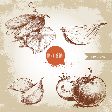 onion slice: Set of hand drawn vegetables. Ripe tomatoes, onion slice, cucumbers with leaf and garlic. Sketch style eco food illustration.