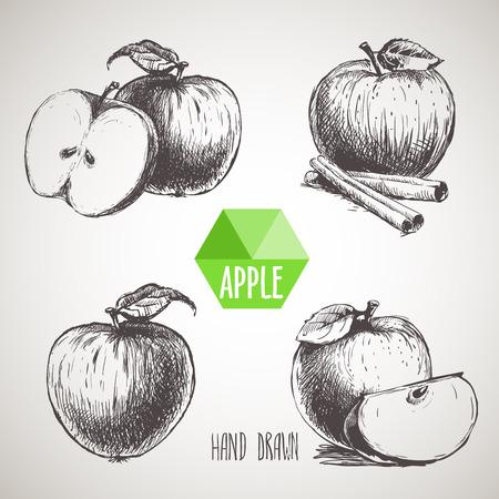 手描き下ろしリンゴのセットです。 エコの有機食品。ベクトル画像セット